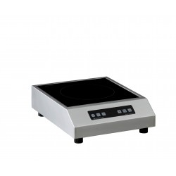 Induction posable 1 zone GLN